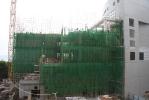 6 Nov 2009_d